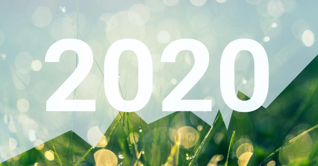 Tuleva 2020. aasta tegevusaruanne